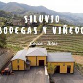 Bodega y viñedos de Siluvio, en Ibias