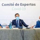 comité expertos andalucía