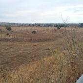 Terrenos donde se construirá el Polígono Industrial de SEPES
