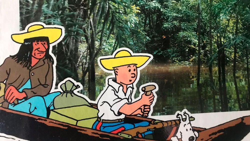 Libros de Tintin