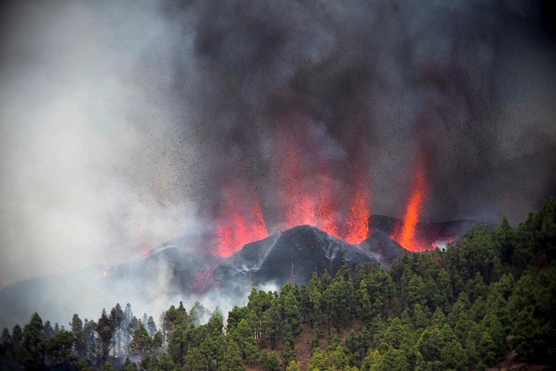 """Las preguntas de Amón: """"¿Puede ser la naturaleza un enemigo feroz del cambio climático?"""""""