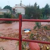 Las fuertes precipitaciones registradas en las últimas horas han provocado inundaciones en vaguadas ubicadas en varias localidades extremeñas, entre ellas Almendralejo (Badajoz)