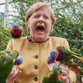 El cómico momento de Angela Merkel rodeada y mordida por unos loros