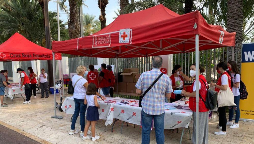 Celebración en Elche de Cruz Roja del Día Internacional de la Juventud 2021.
