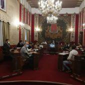 Pleno del Ayuntamiento de Alicante