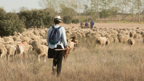 Mujer en el medio rural