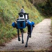 Spot, robot vigilante