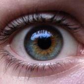 Ojos azules con manchas de marrón