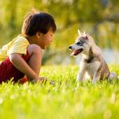 Cachorro con niño