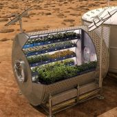 Recreación informática que muestra el cultivo de plantas en el espacio