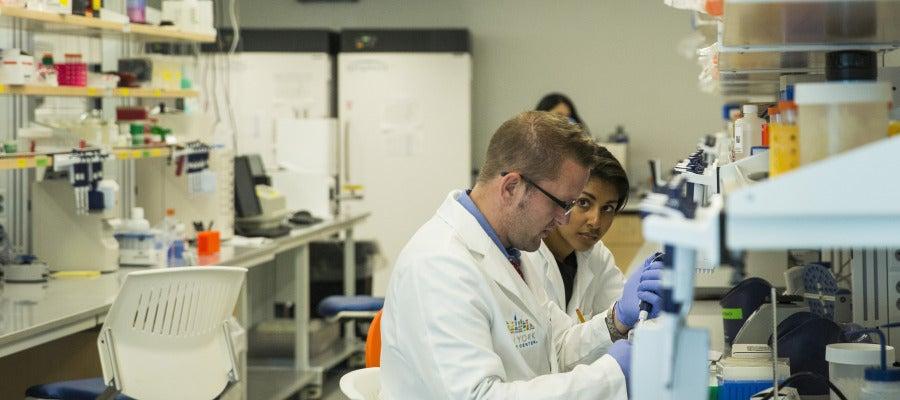 Científicos trabajando en un laboratorio