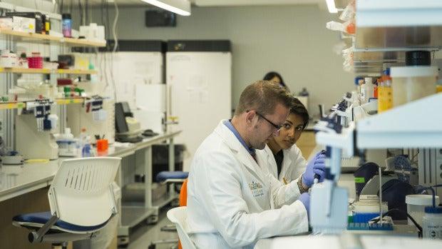 Comienzan a probar en humanos la primera inmunoterapia contra el cáncer desarrollada íntegramente en España