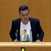 Imagen de archivo: El senador de Compromís, Carles Mulet.