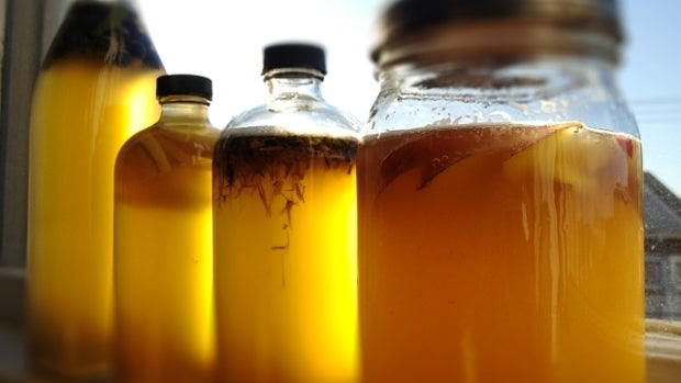 J'Adore: Kombucha, la bebida de las bacterias que fortalece nuestra salud