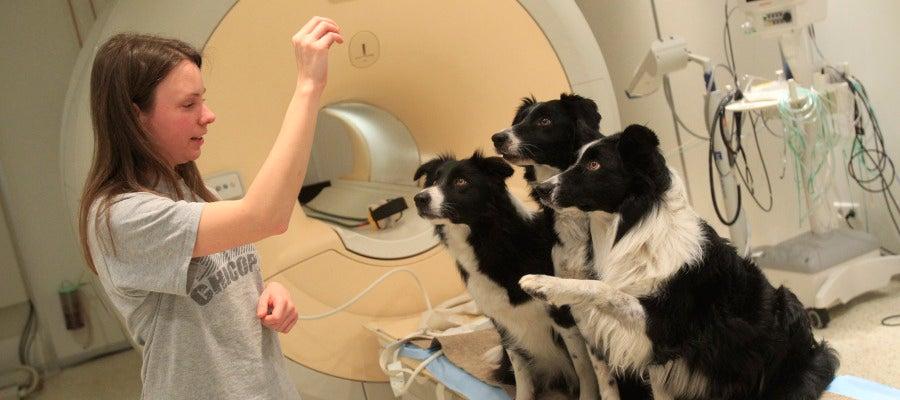 Dora Kettinger habla con sus perros después del examen de los Clincs neurológicos en Budapest