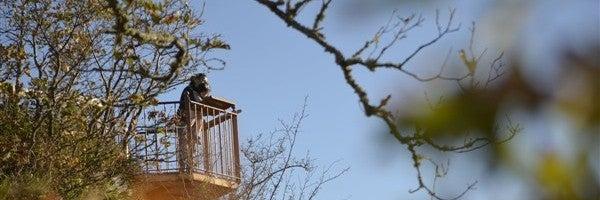 El perfil de Cantabria Infinita nos envía esta foto del Mirador de Santa Catalina en Peñarrubia