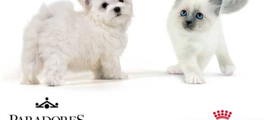 Paradores que admiten perros