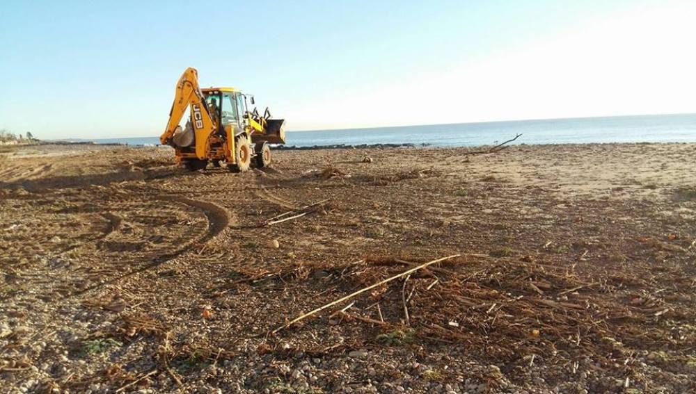 Trabajos de limpieza en la costa de Borriana.