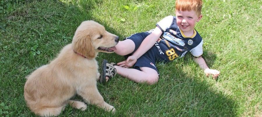 Los niños que viven con mascotas tienen menos riesgo de padecer obesidad
