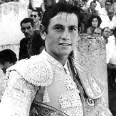 Palomo Linares