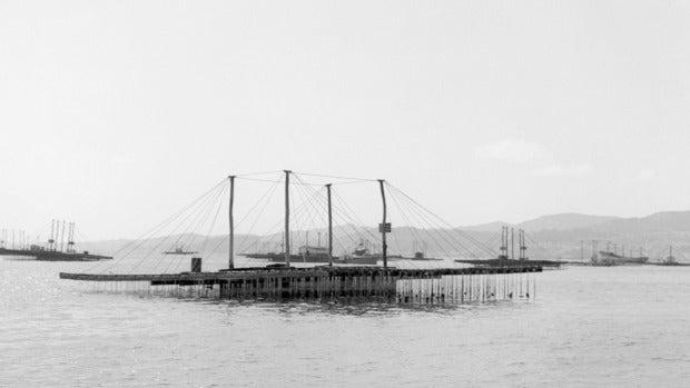 """José Antonio Gómez, patrón mayor de la cofradía de Portonovo: """"El barco chocó contra una batea, intentó volver a la playa pero se hundió"""""""