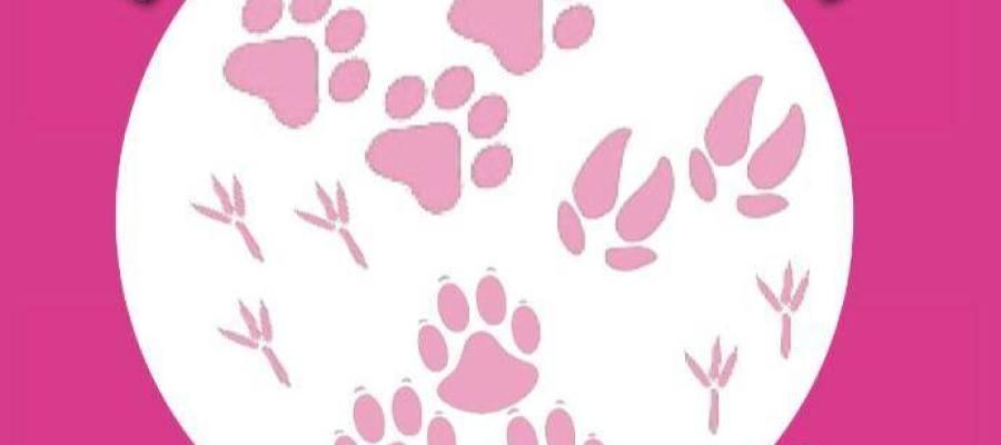 Logo de la Asociación Animalejos