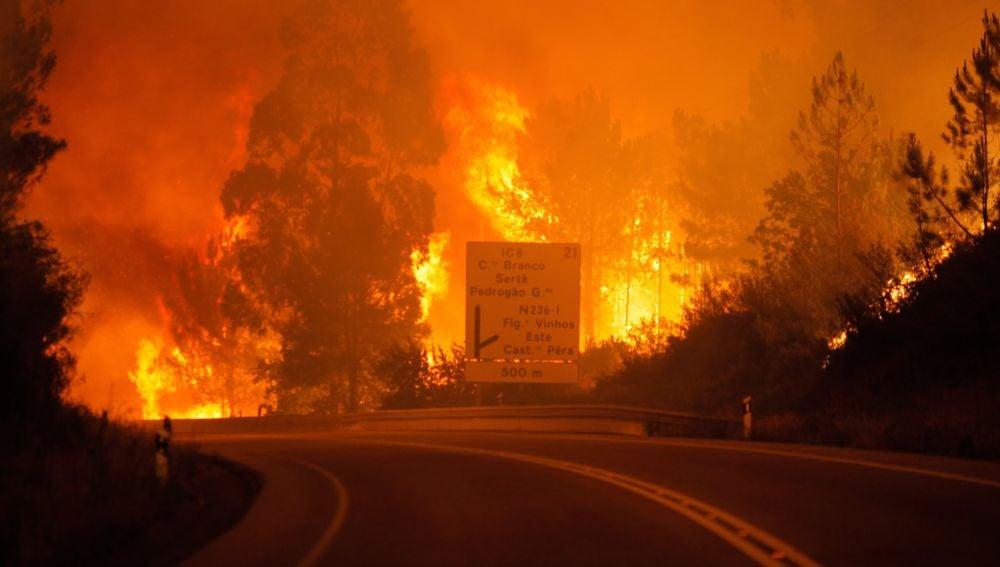 Incendio en el municipio de Pedrogao Grande, en el centro de Portugal