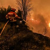 Los bomberos luchan contra el incendio de Portugal
