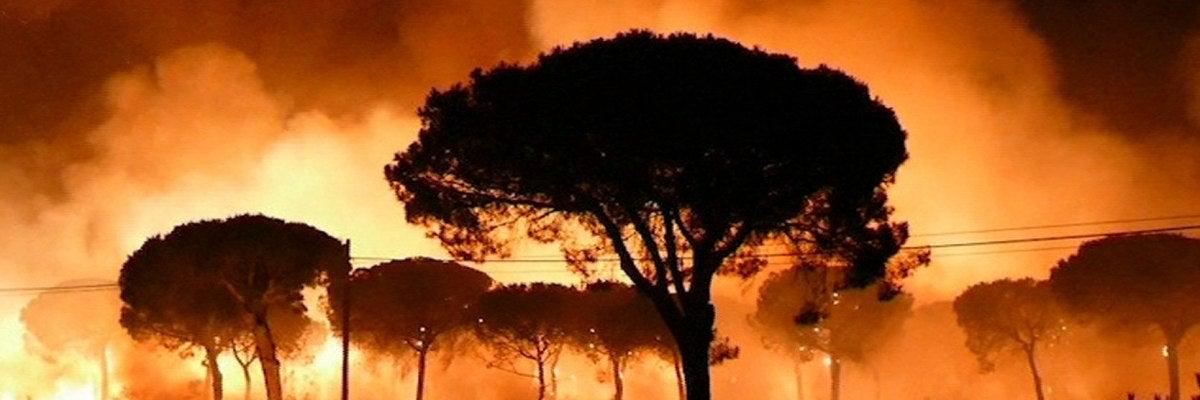 Imagen de EFE Televisión del incendio declarado anoche en el paraje La Peñuela de Moguer