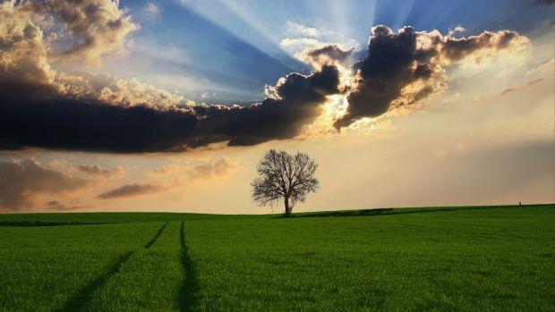 La Cultureta 5x33: ¿Hemos idealizado la naturaleza?