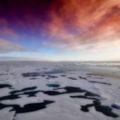 El deshielo del Antártico