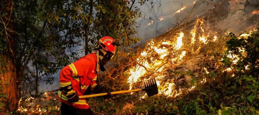 Bombero portugués en las labores de extinción