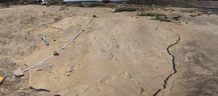 Huellas halladas en Creta