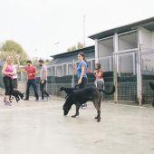 El equipo de Mascoteros en la Sociedad Protectora de Animales de Mataró