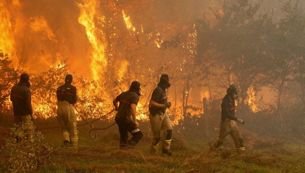 Operarios de los servicios de extinción de incendios trabaja en la zona de Zamanes, Vigo