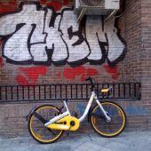 Destrozo de las bicicletas públicas de alquiler