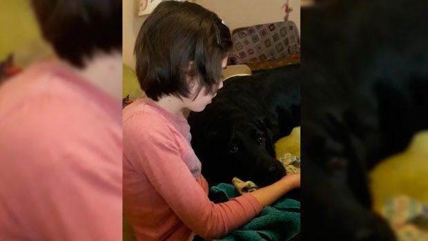 Lolo, el perro que ayuda a la pequeña Mara en sus fuertes ataques de epilepsia provocados por el Síndrome de Rett