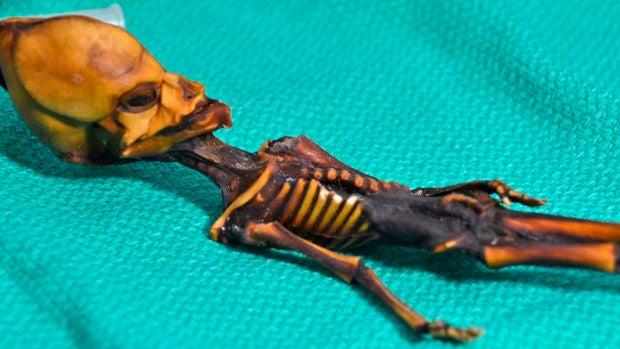 """El """"esqueleto de Atacama"""" no es un alienígena sino un bebé con raras mutaciones"""