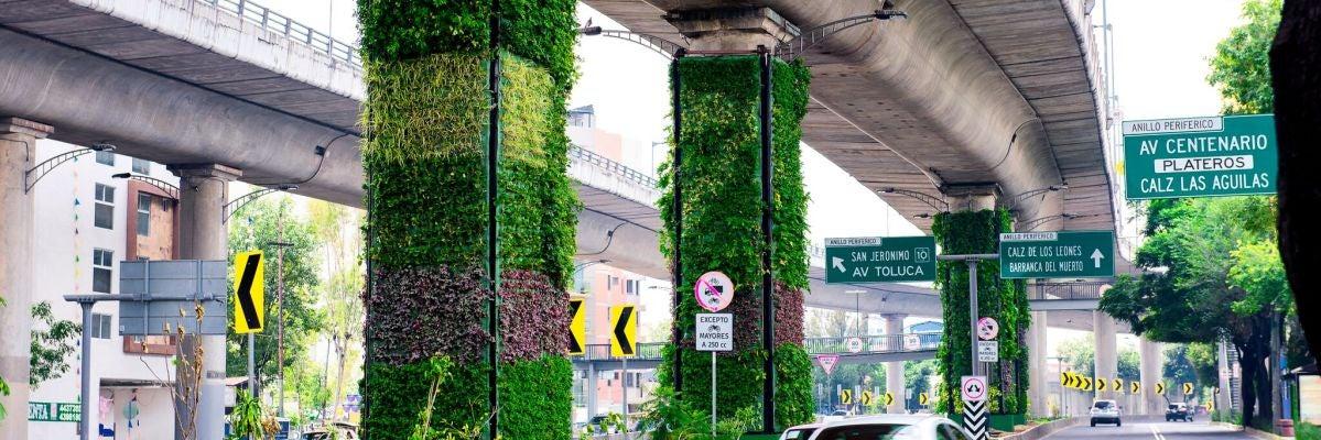 Latitud Cero: Iniciativas de las ciudades para proteger el medio ambiente