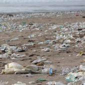 El plastico que flota en el mar estimula el crecimiento de bacterias