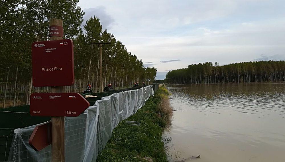 Ribera Ebro