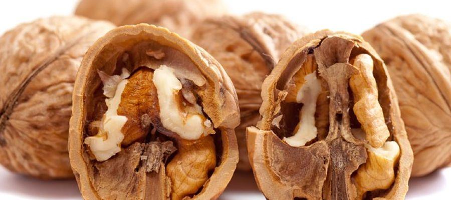 La nuez es el fruto seco que más alergias causa a los niños