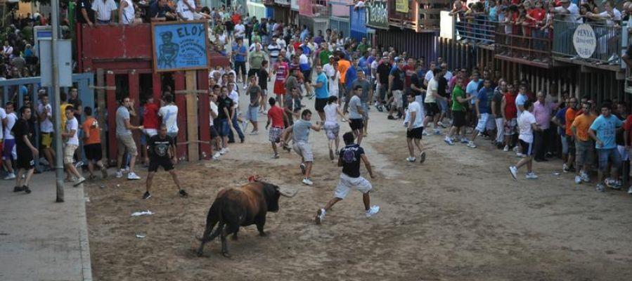 La jove de 19 anys ferida per asta de bou es troba ingressada en l´Hospital General de Castelló.