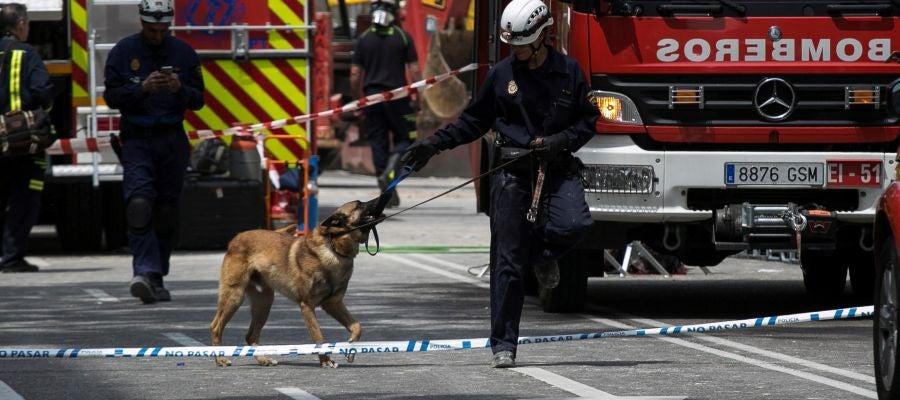 Los Bomberos del Ayuntamiento de Madrid trabajan en dos zonas marcadas por perros