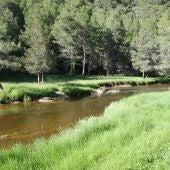 Cañón de Río Lobos