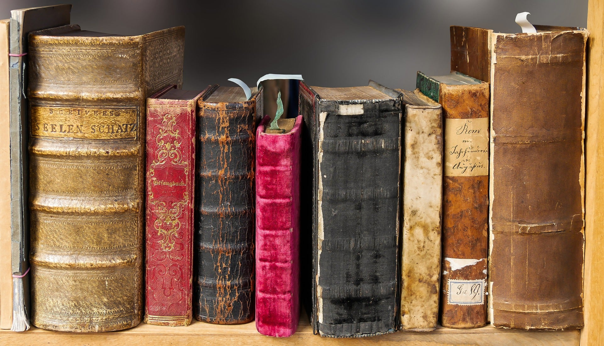 Punta Norte: De un biblioteca oculta durante mil años