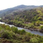 Río Miño