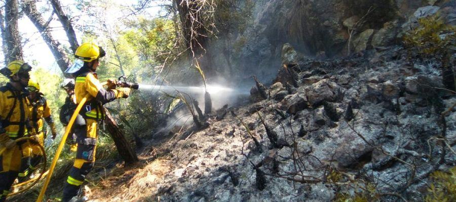 Los bomberos participan en las tareas de extinción del incendio forestal de Cala Estellencs (Mallorca).