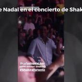 """El sensual baile de Rafa Nadal en el concierto de Shakira: """"¡Tiene algunos movimientos!"""""""