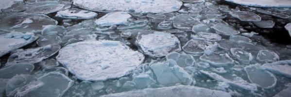 Alertan de que las temperaturas en el Ártico están subiendo al doble de veolidad que en el resto del planeta